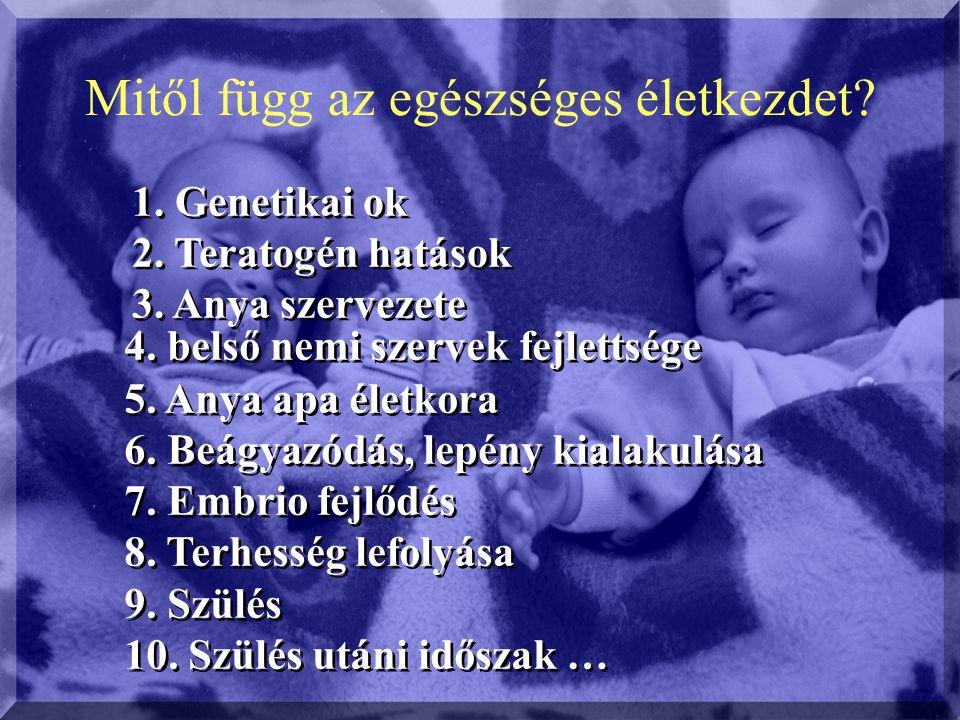 Megye Születés 1 éven aluli veszteség Koraszülöttek (37- hét előtt ) Perinatális (0-7 nap+halva sz.) élvehalva%oAbsz.%oAbsz.% %o Baranya3543174,8215,93078,7257,0 Borsod-Abaúj-Zemplén 7289537,38111,16370,110113,8 Csongrád374082,1297,82319,1205,2 Győr-Moson-Sopron4035133,2266,42556,3225,4 Hajdú-Bihar5545285,0213,84979,0407,2 Heves2951206,7206,72428,23010,1 Jász-Nagykun- Szolnok3893256,4225,73398,7389,7 Nógrád 2007136,5199,51618,094,5 Pest12317443,6564,59167,4735,9 Somogy2973248,1258,43120,14013,4 Szabolcs-Szatmár- Bereg megye 6257284,5528,35598,9447,0 Tolna 2187135,9156,81898,6219,6 Vas 2198125,5104,51446,6177,7 Veszprém 3174154,7154,72066,5268,2 Zala 22892278995,2114,81888,3177,4 Budapest 15091473,1553,69250,1332,2
