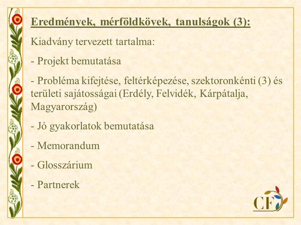 """Folytatás…… Eredmények továbbvitele újabb projekt által: Európai Bizottság Magyarországi Képviselete pályázati kiírása, nemzetközi pályázatok Újabb tendenciák felmérése, megvitatása – pl.: interetnikus konfliktusok, """"hazatérők fogadása Konkrét, specifikusabb, kisebb projektek megvalósítása, pl.: kutatások Üzleti szféra, cégek bevonása, érdekeltté tétele, célcsoport bővítése: fiatalok bevonása"""