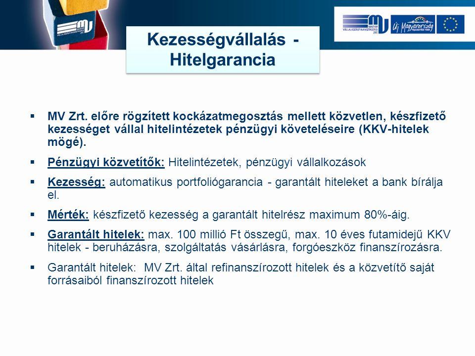  MV Zrt.
