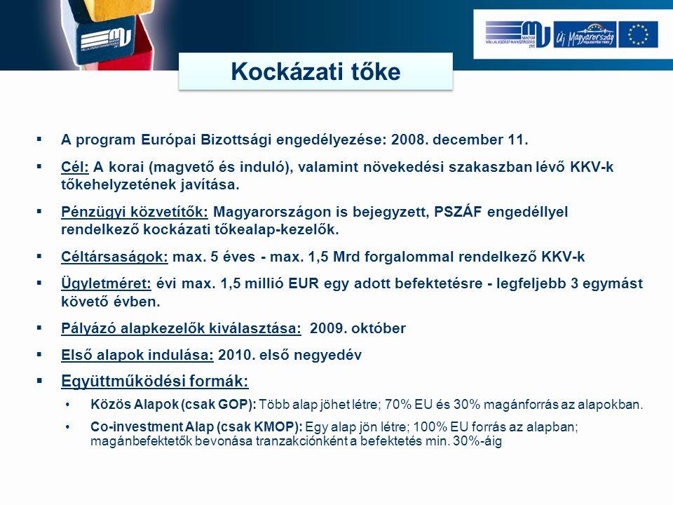  A program Európai Bizottsági engedélyezése: 2008.