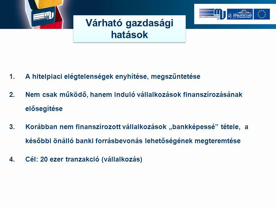 """1.A hitelpiaci elégtelenségek enyhítése, megszűntetése 2.Nem csak működő, hanem induló vállalkozások finanszírozásának elősegítése 3.Korábban nem finanszírozott vállalkozások """"bankképessé tétele, a későbbi önálló banki forrásbevonás lehetőségének megteremtése 4.Cél: 20 ezer tranzakció (vállalkozás) Várható gazdasági hatások"""