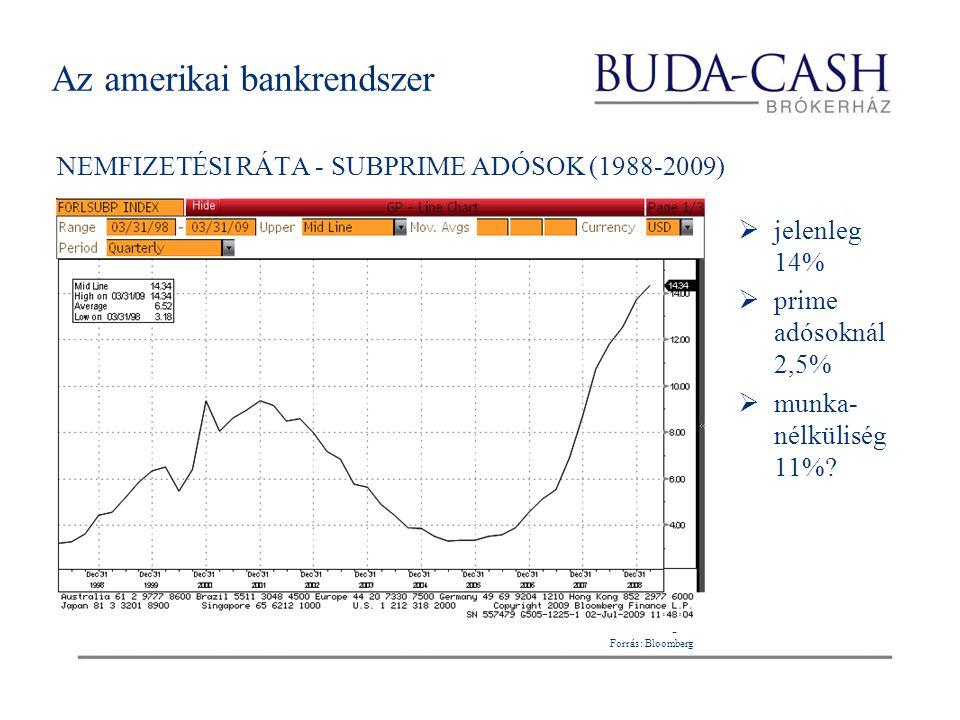 Az amerikai bankrendszer NEMFIZETÉSI RÁTA - SUBPRIME ADÓSOK (1988-2009)  jelenleg 14%  prime adósoknál 2,5%  munka- nélküliség 11%? Forrás: Bloombe