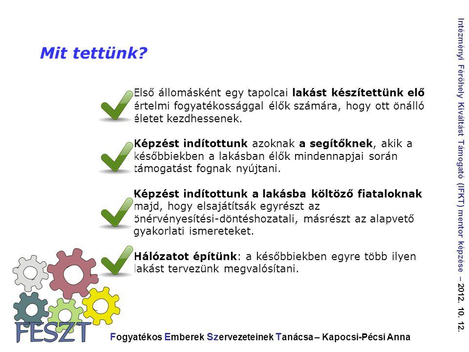 F ogyatékos E mberek Sz ervezeteinek T anácsa – Kapocsi-Pécsi Anna Intézményi Férőhely Kiváltást Támogató (IFKT) mentor képzése – 2012.