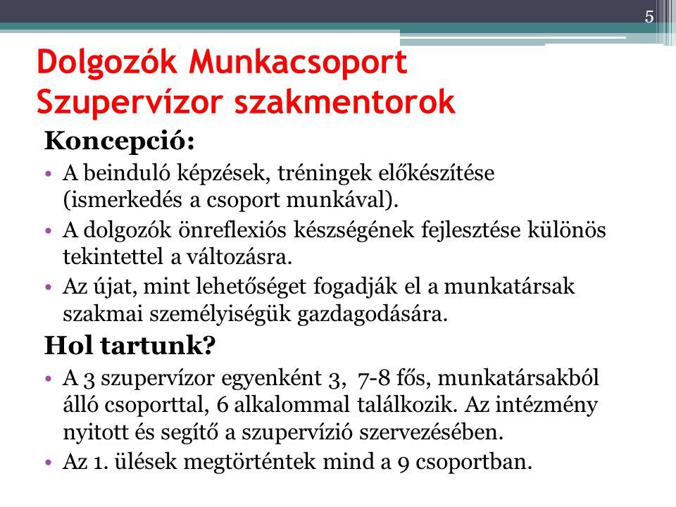 Dolgozók Munkacsoport Szupervízor szakmentorok Koncepció: A beinduló képzések, tréningek előkészítése (ismerkedés a csoport munkával). A dolgozók önre