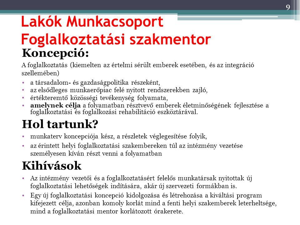 Lakók Munkacsoport Foglalkoztatási szakmentor Koncepció: A foglalkoztatás (kiemelten az értelmi sérült emberek esetében, és az integráció szellemében)