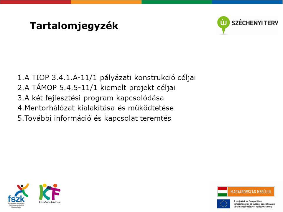 A TIOP 3.4.1.A-11/1 pályázati konstrukció céljai 1.A fogyatékos személyek számára ápolást-gondozást nyújtó bentlakásos szociális intézményi férőhelyek kiváltása a lakókörnyezetbe integrált elhelyezést nyújtó, széles szolgáltatási kínálattal rendelkező, az öngondoskodásra való képességre épülő és az azt fejlesztő szolgáltatási rendszer irányába történő elmozdulással, összhangban a 1257/2011.