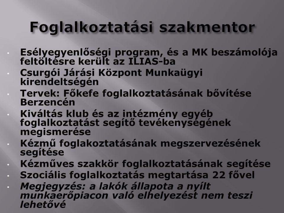 Esélyegyenlőségi program, és a MK beszámolója feltöltésre került az ILIAS-ba Csurgói Járási Központ Munkaügyi kirendeltségén Tervek: Főkefe foglalkozt