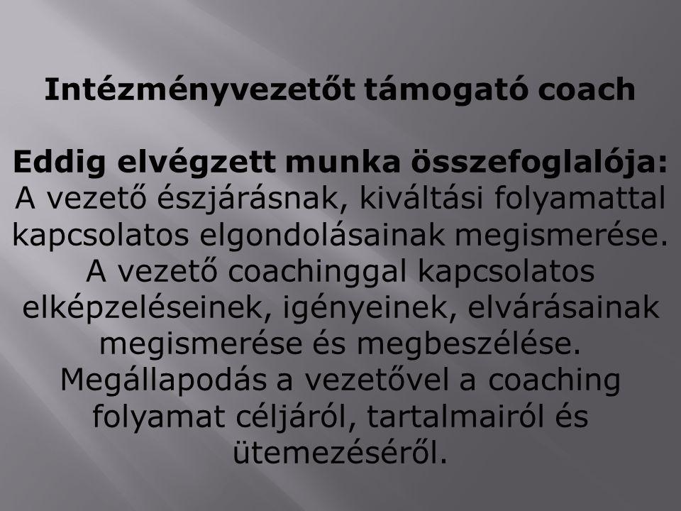 Intézményvezetőt támogató coach Eddig elvégzett munka összefoglalója: A vezető észjárásnak, kiváltási folyamattal kapcsolatos elgondolásainak megismer