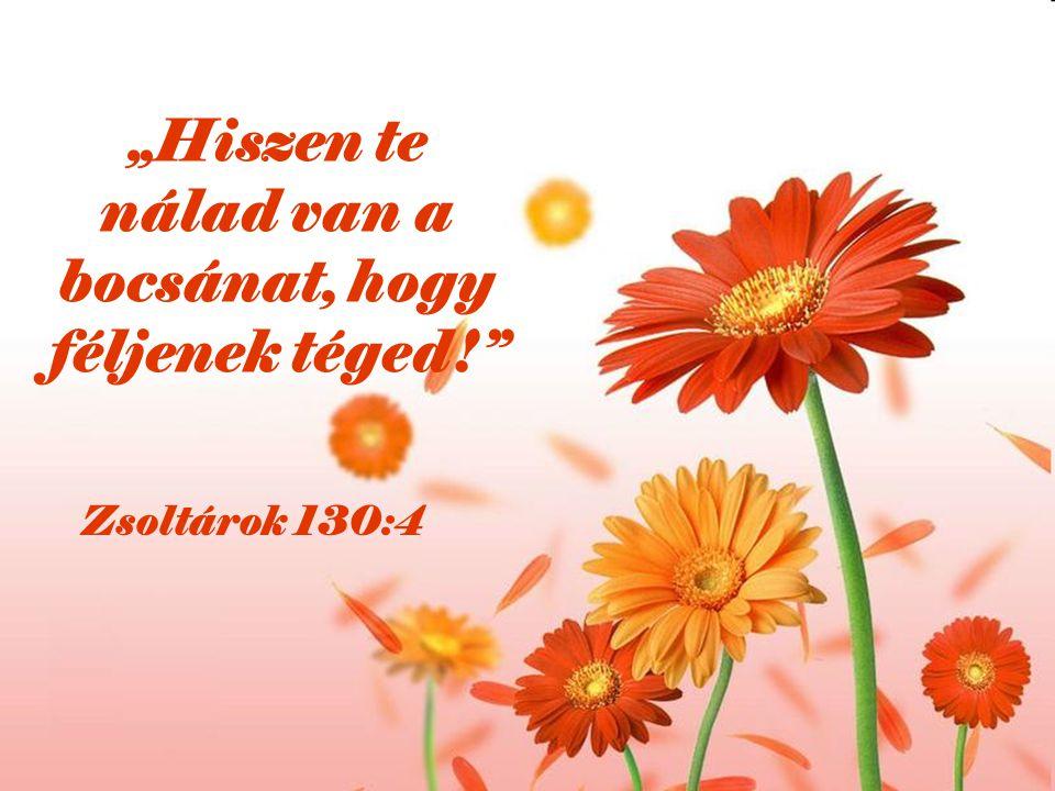 """""""Hiszen te nálad van a bocsánat, hogy féljenek téged!"""" Zsoltárok 130:4"""