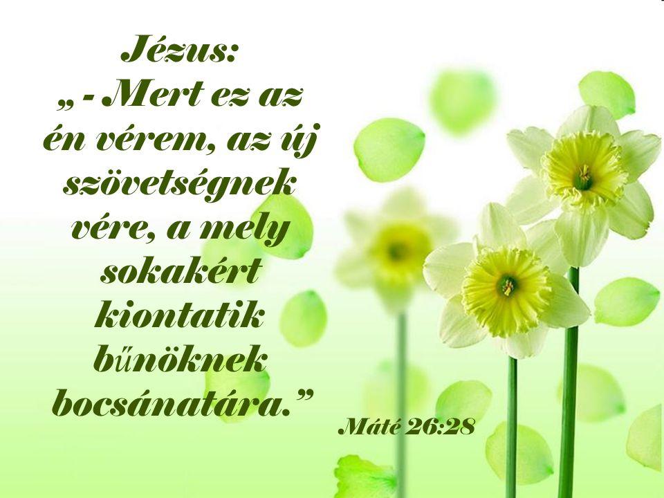 """Jézus: """" - Mert ez az én vérem, az új szövetségnek vére, a mely sokakért kiontatik b ű nöknek bocsánatára."""" Máté 26:28"""