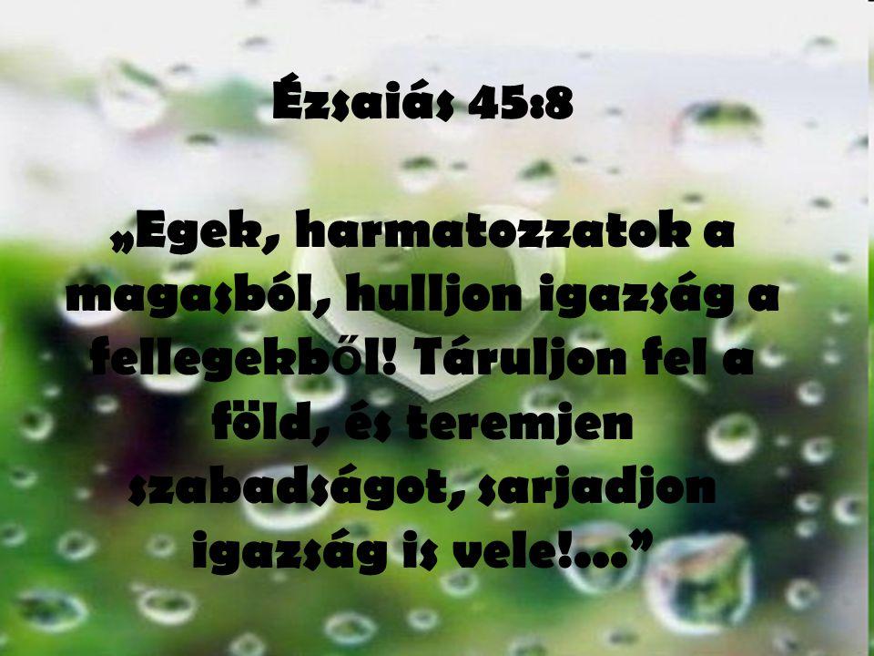 """Ézsaiás 45:8 """"Egek, harmatozzatok a magasból, hulljon igazság a fellegekb ő l! Táruljon fel a föld, és teremjen szabadságot, sarjadjon igazság is vele"""