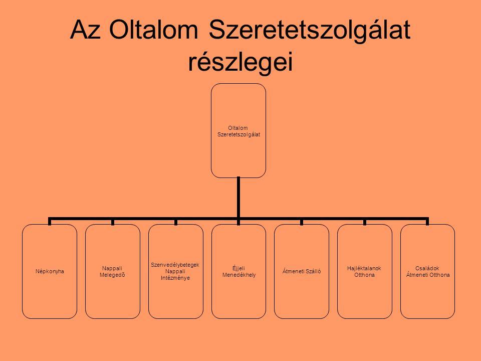"""A család """"támogató rendszer jellegű funkciói Referencia- és kontrollcsoportként hat."""