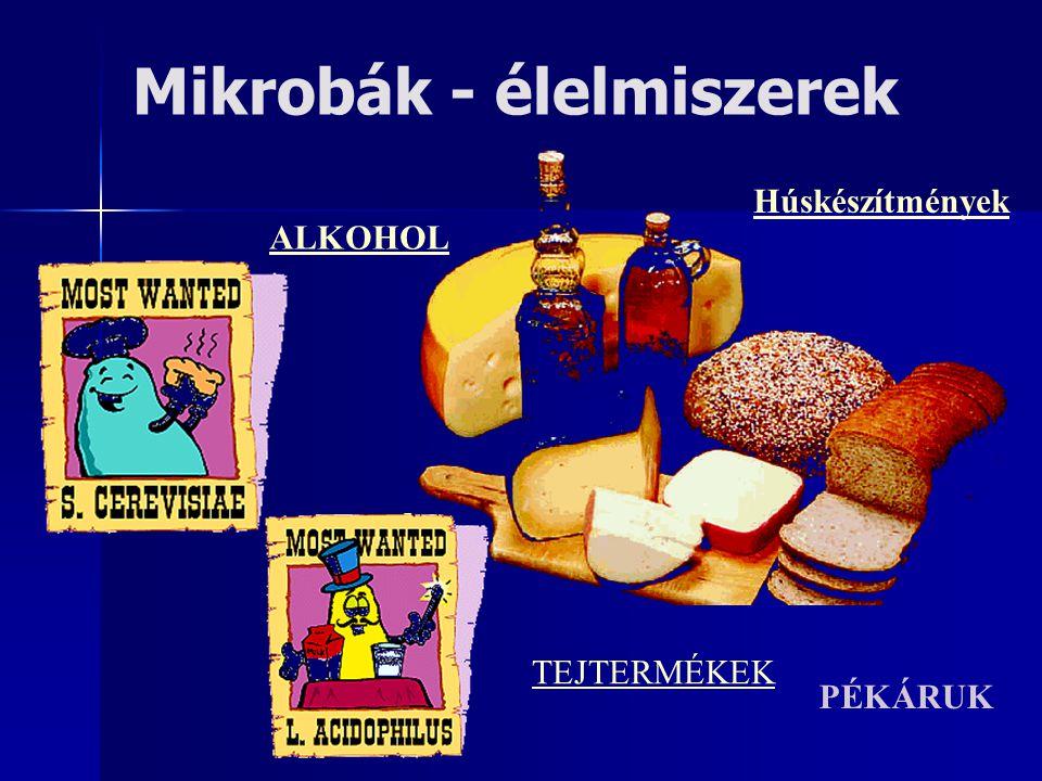Mikrobák - élelmiszerek ALKOHOL TEJTERMÉKEK PÉKÁRUK Húskészítmények
