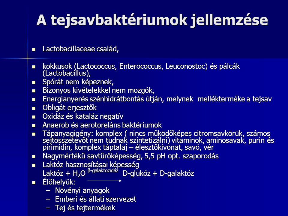 A tejsavbaktériumok jellemzése Lactobacillaceae család, Lactobacillaceae család, kokkusok (Lactococcus, Enterococcus, Leuconostoc) és pálcák (Lactobac