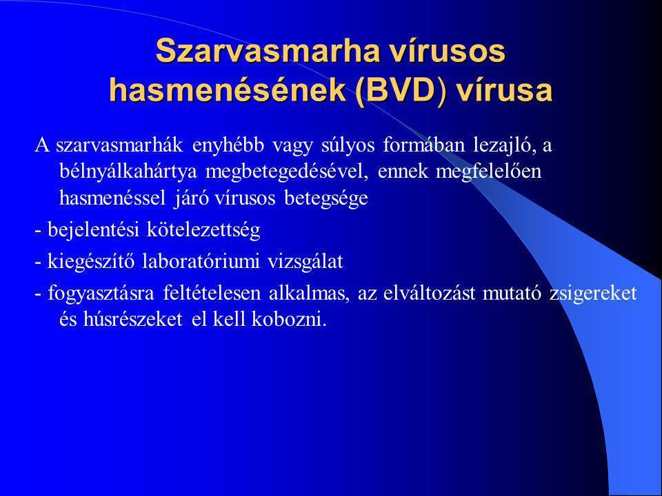 Szarvasmarha vírusos hasmenésének (BVD) vírusa A szarvasmarhák enyhébb vagy súlyos formában lezajló, a bélnyálkahártya megbetegedésével, ennek megfele