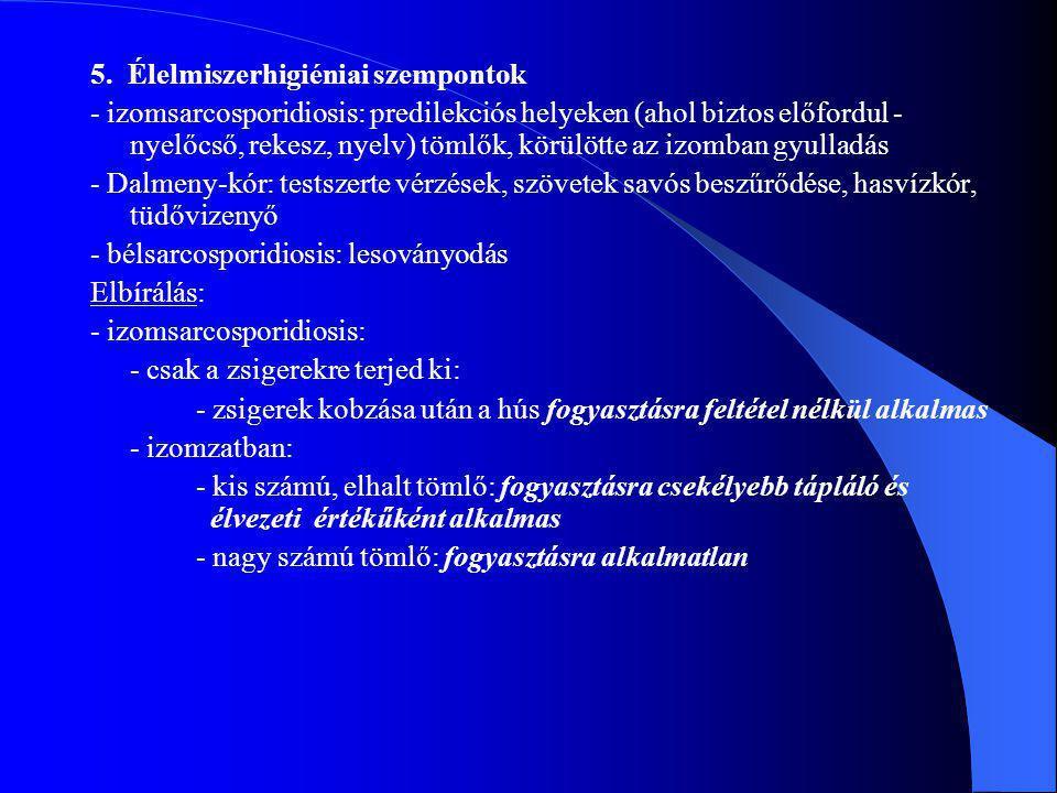 5. Élelmiszerhigiéniai szempontok - izomsarcosporidiosis: predilekciós helyeken (ahol biztos előfordul - nyelőcső, rekesz, nyelv) tömlők, körülötte az