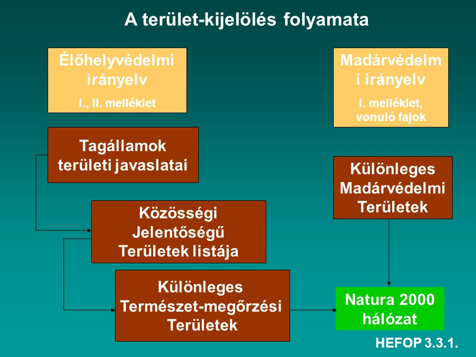 HEFOP 3.3.1. Natura 2000 hálózat Élőhelyvédelmi irányelv I., II. melléklet Madárvédelm i irányelv I. melléklet, vonuló fajok Különleges Madárvédelmi T