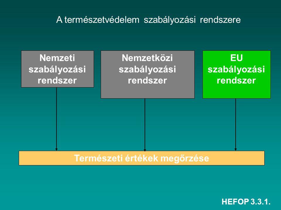HEFOP 3.3.1. A természetvédelem szabályozási rendszere Természeti értékek megőrzése Nemzeti szabályozási rendszer Nemzetközi szabályozási rendszer EU