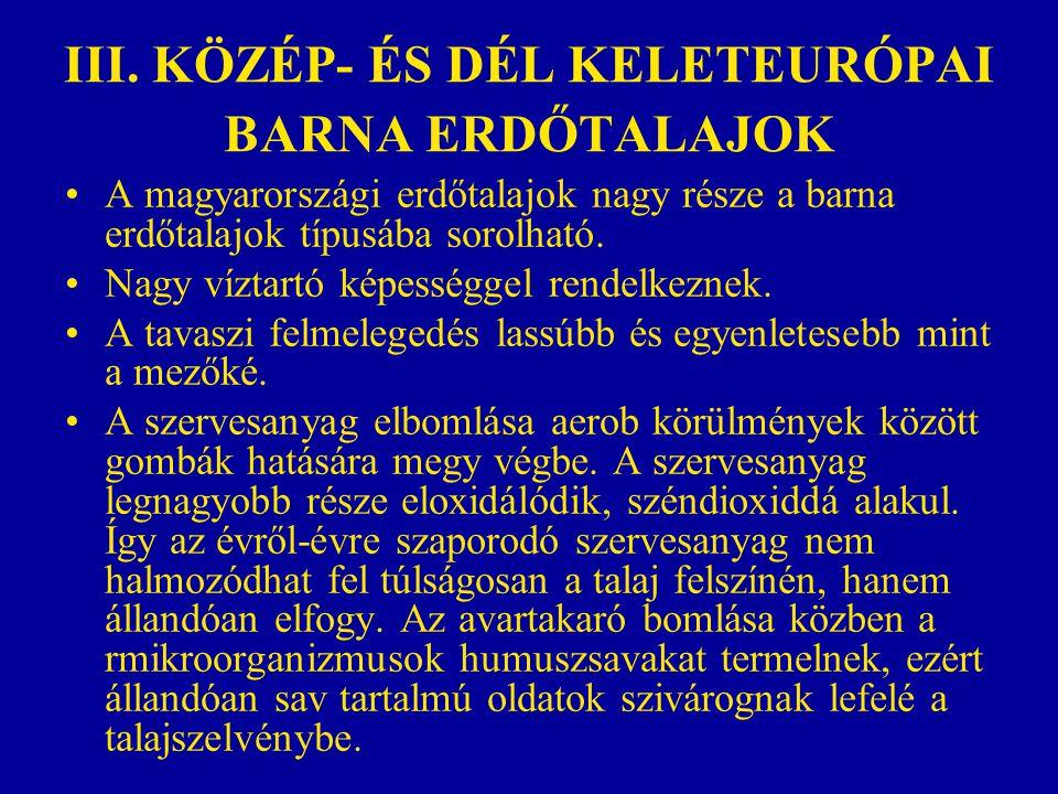 III. KÖZÉP- ÉS DÉL KELETEURÓPAI BARNA ERDŐTALAJOK A magyarországi erdőtalajok nagy része a barna erdőtalajok típusába sorolható. Nagy víztartó képessé