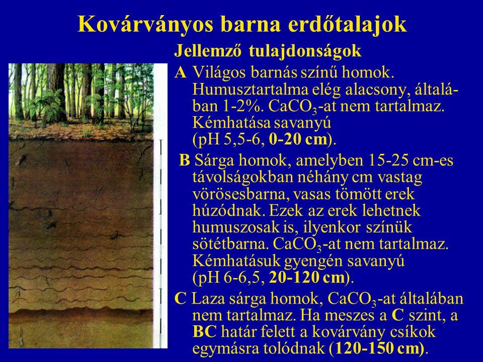 Kovárványos barna erdőtalajok Jellemző tulajdonságok AVilágos barnás színű homok. Humusztartalma elég alacsony, általá- ban 1-2%. CaCO 3 -at nem tarta