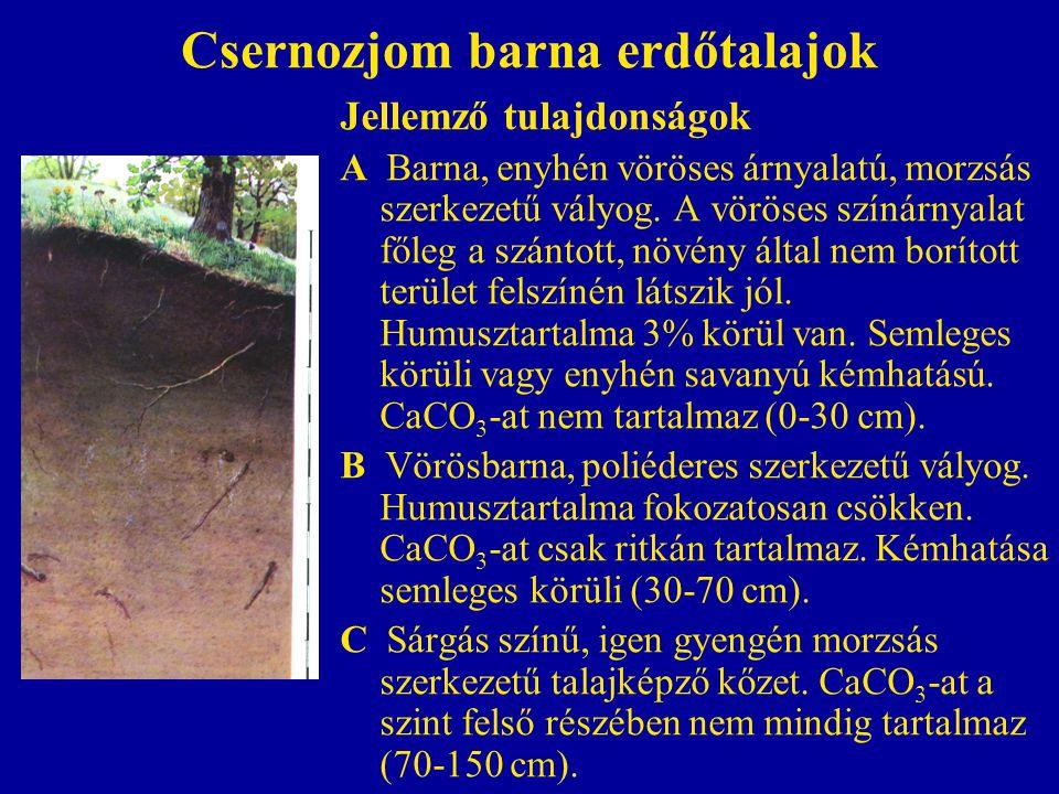 Csernozjom barna erdőtalajok Jellemző tulajdonságok A Barna, enyhén vöröses árnyalatú, morzsás szerkezetű vályog. A vöröses színárnyalat főleg a szánt