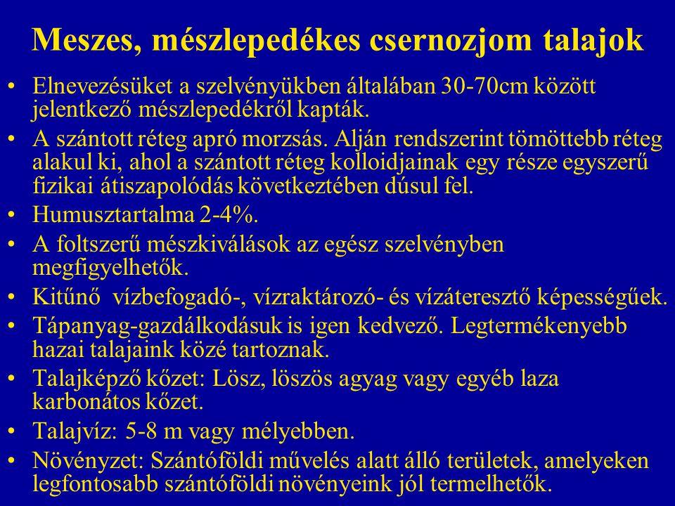 Meszes, mészlepedékes csernozjom talajok Elnevezésüket a szelvényükben általában 30-70cm között jelentkező mészlepedékről kapták. A szántott réteg apr