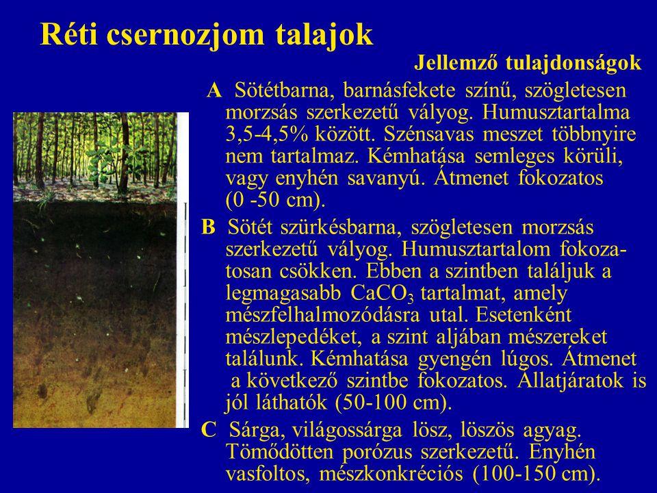 Réti csernozjom talajok Jellemző tulajdonságok A Sötétbarna, barnásfekete színű, szögletesen morzsás szerkezetű vályog. Humusztartalma 3,5-4,5% között