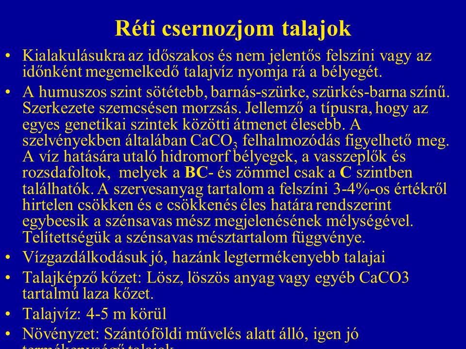 Réti csernozjom talajok Kialakulásukra az időszakos és nem jelentős felszíni vagy az időnként megemelkedő talajvíz nyomja rá a bélyegét. A humuszos sz