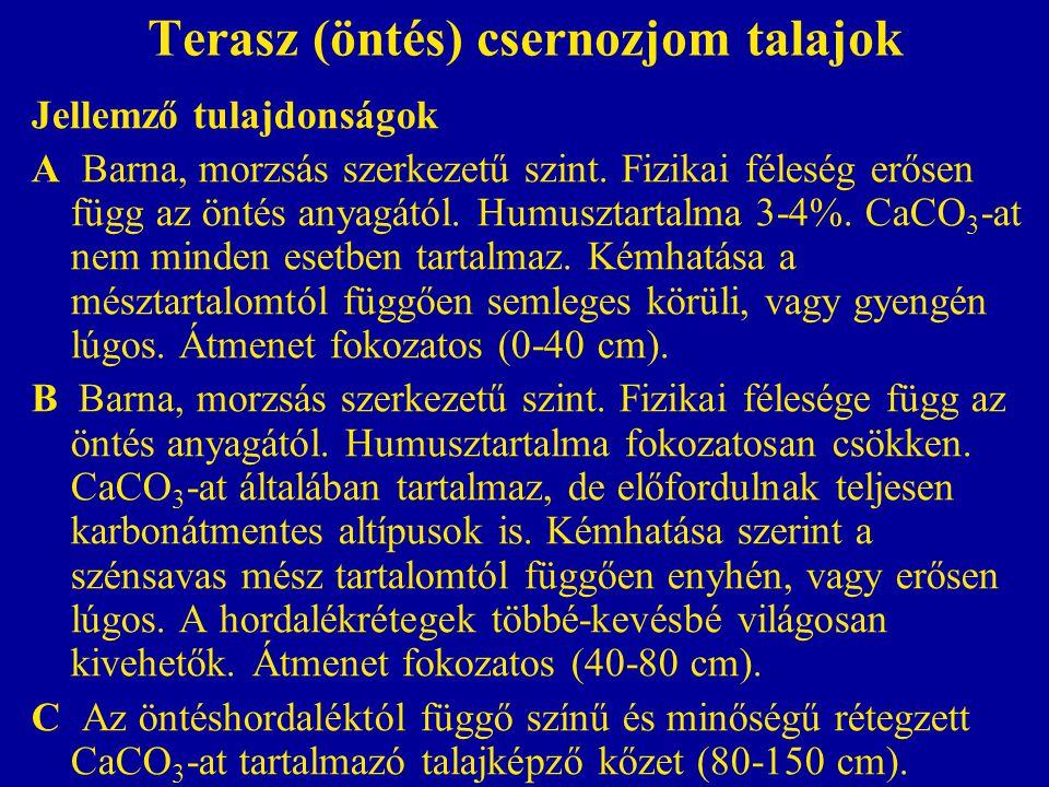 Terasz (öntés) csernozjom talajok Jellemző tulajdonságok A Barna, morzsás szerkezetű szint. Fizikai féleség erősen függ az öntés anyagától. Humusztart