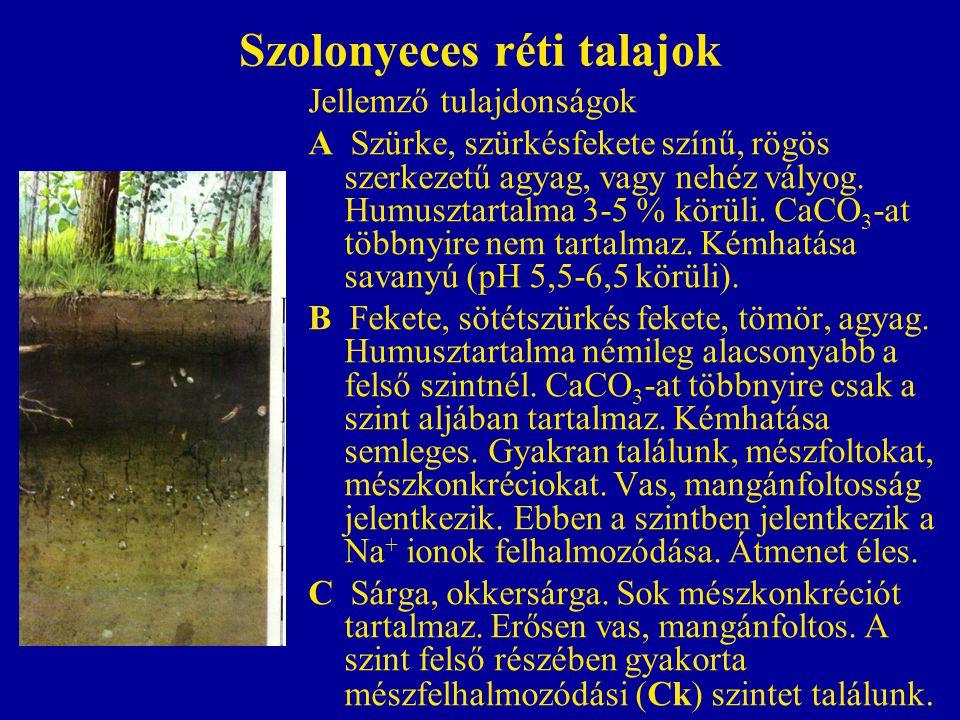 Szolonyeces réti talajok Jellemző tulajdonságok A Szürke, szürkésfekete színű, rögös szerkezetű agyag, vagy nehéz vályog. Humusztartalma 3-5 % körüli.