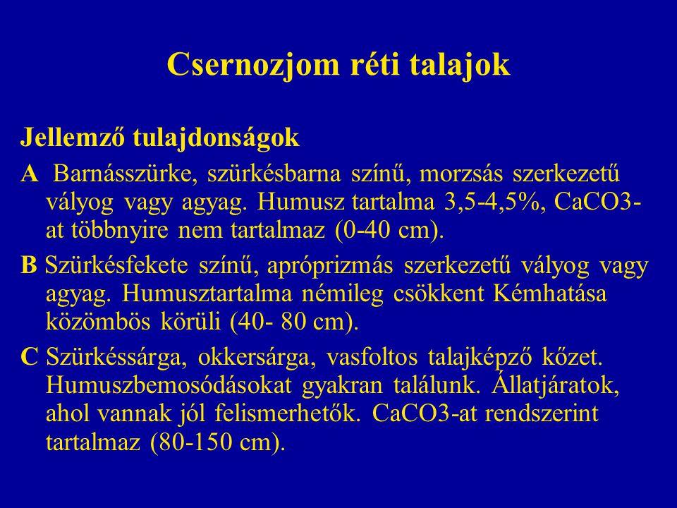 Csernozjom réti talajok Jellemző tulajdonságok A Barnásszürke, szürkésbarna színű, morzsás szerkezetű vályog vagy agyag. Humusz tartalma 3,5-4,5%, CaC