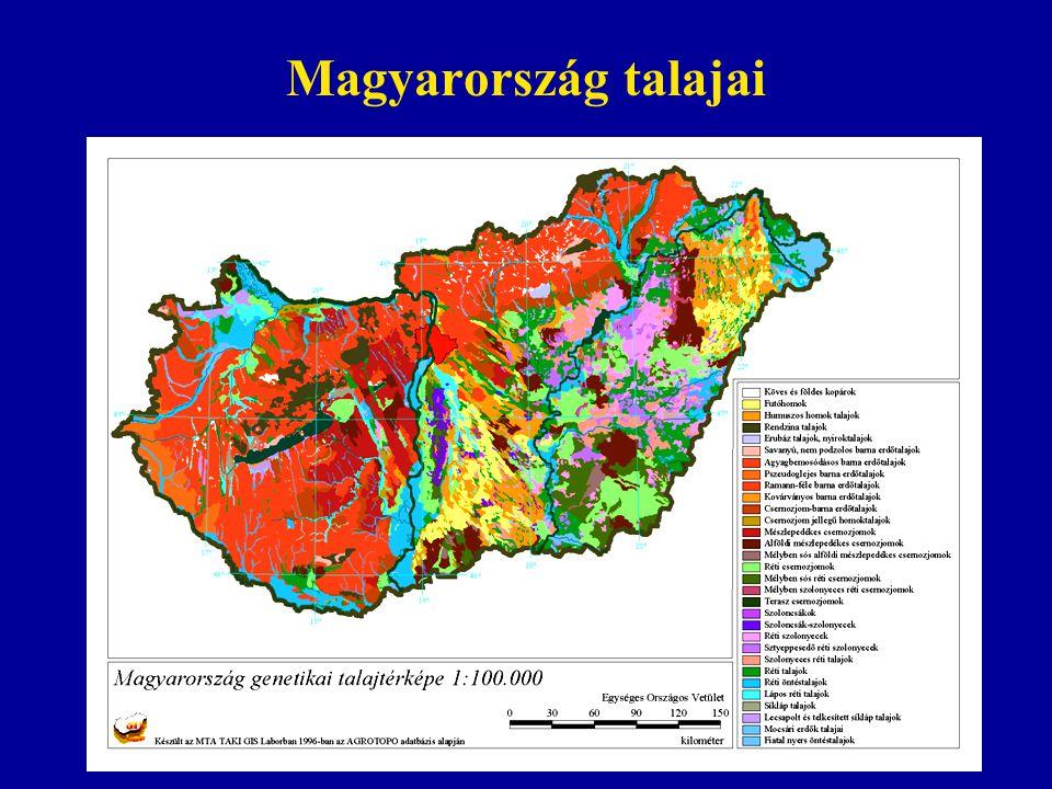 Magyarország talajai