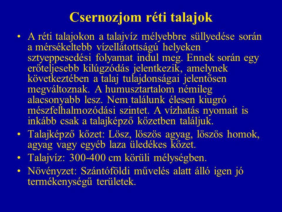 Csernozjom réti talajok A réti talajokon a talajvíz mélyebbre süllyedése során a mérsékeltebb vízellátottságú helyeken sztyeppesedési folyamat indul m
