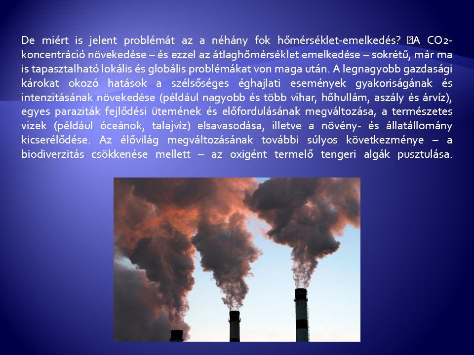 A felsorolt hatások enyhítése tehát központi kérdés Földünk jövője szempontjából.