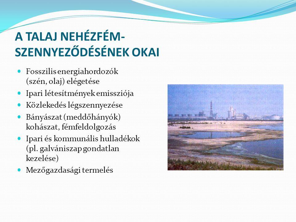 A TALAJ NEHÉZFÉM- SZENNYEZŐDÉSÉNEK OKAI Fosszilis energiahordozók (szén, olaj) elégetése Ipari létesítmények emissziója Közlekedés légszennyezése Bány
