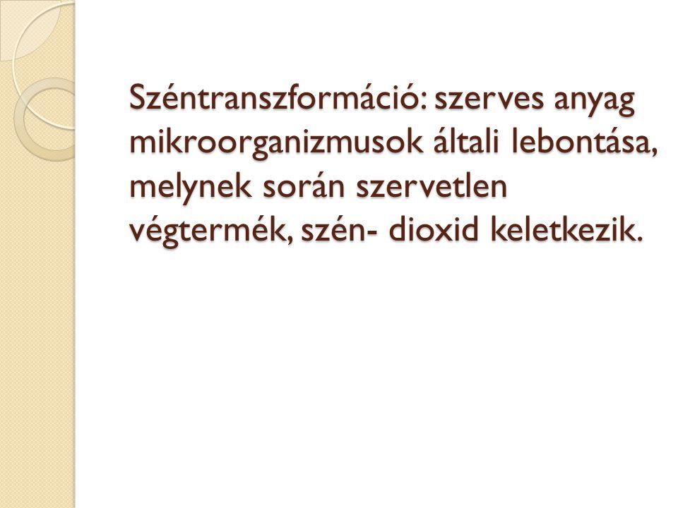 Széntranszformáció: szerves anyag mikroorganizmusok általi lebontása, melynek során szervetlen végtermék, szén- dioxid keletkezik.