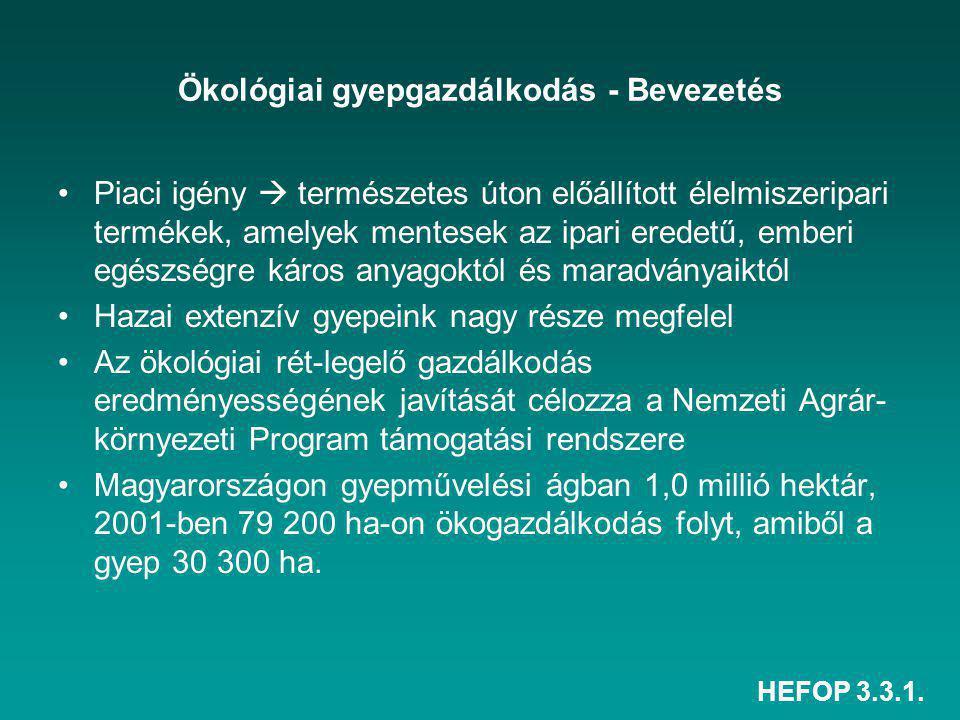 HEFOP 3.3.1. Előadás anyagát készítette: Burai Péter (DE ATC) KÖSZÖNÖM A FIGYELMÜKET