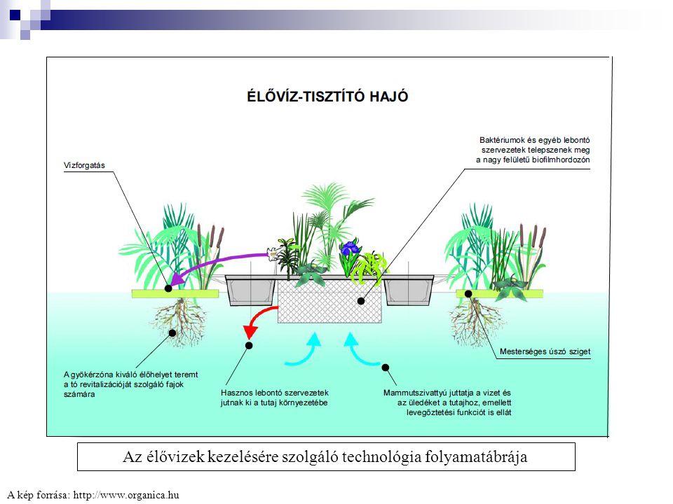 A kép forrása: http://www.organica.hu Az élővizek kezelésére szolgáló technológia folyamatábrája