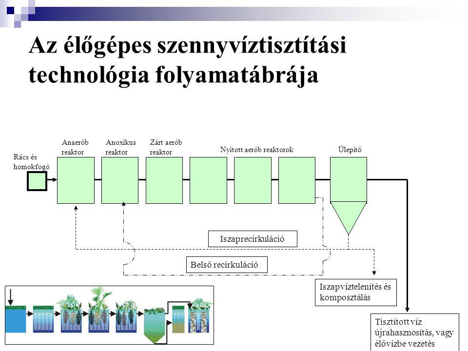 Az élőgépes szennyvíztisztítási technológia folyamatábrája Rács és homokfogó Anaerób reaktor Anoxikus reaktor Zárt aerób reaktor Nyitott aerób reaktor