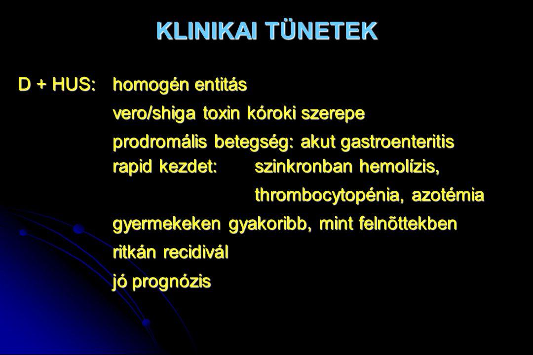 KLINIKAI TÜNETEK D + HUS:homogén entitás vero/shiga toxin kóroki szerepe prodromális betegség: akut gastroenteritis rapid kezdet:szinkronban hemolízis