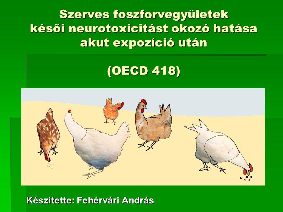 Szerves foszforvegyületek késői neurotoxicitást okozó hatása akut expozíció után (OECD 418) Készítette: Fehérvári András