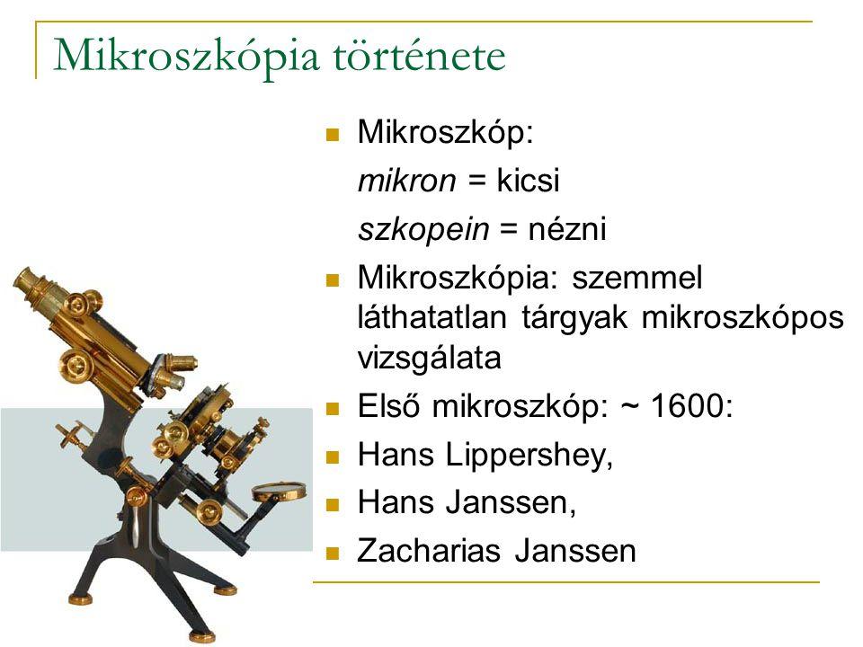 Mikroszkópia története Mikroszkóp: mikron = kicsi szkopein = nézni Mikroszkópia: szemmel láthatatlan tárgyak mikroszkópos vizsgálata Első mikroszkóp: