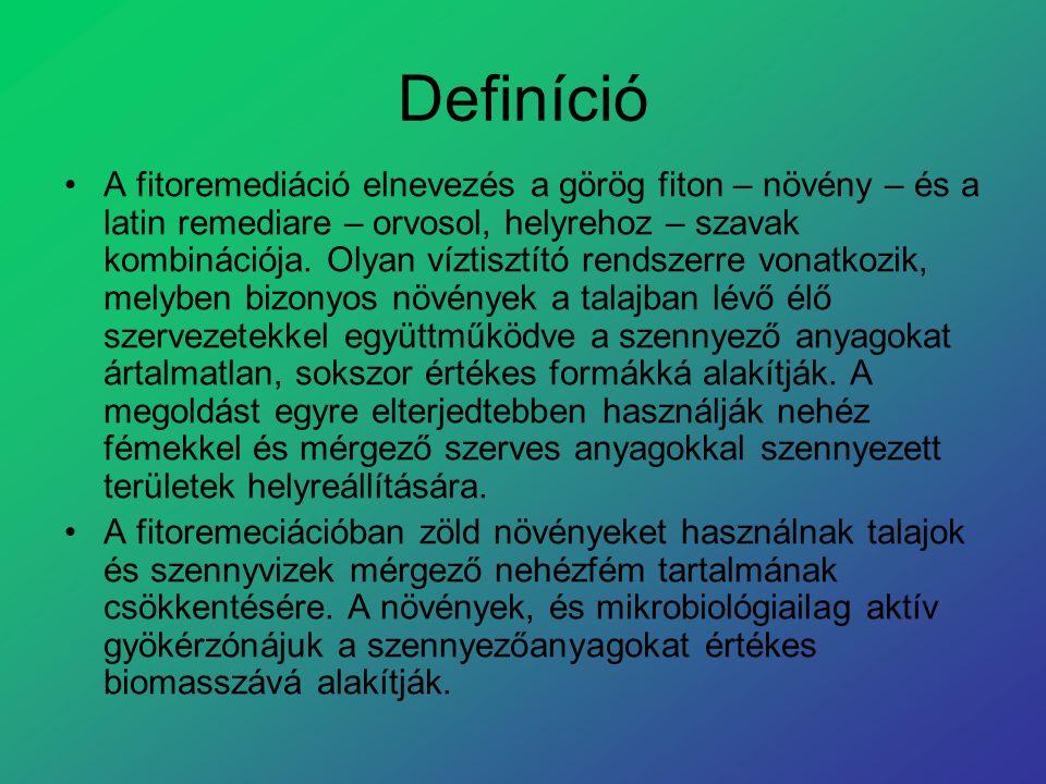 Definíció A fitoremediáció elnevezés a görög fiton – növény – és a latin remediare – orvosol, helyrehoz – szavak kombinációja. Olyan víztisztító rends