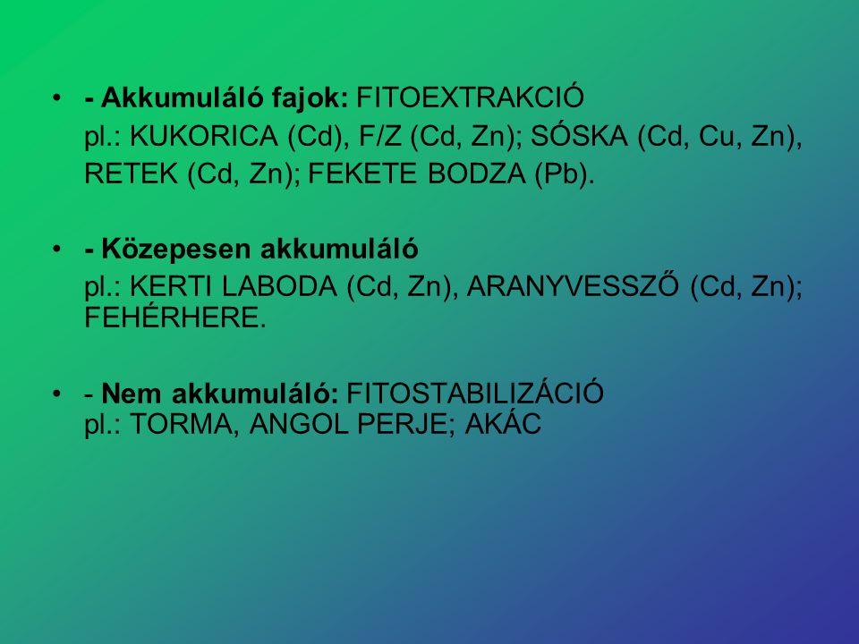 - Akkumuláló fajok: FITOEXTRAKCIÓ pl.: KUKORICA (Cd), F/Z (Cd, Zn); SÓSKA (Cd, Cu, Zn), RETEK (Cd, Zn); FEKETE BODZA (Pb). - Közepesen akkumuláló pl.: