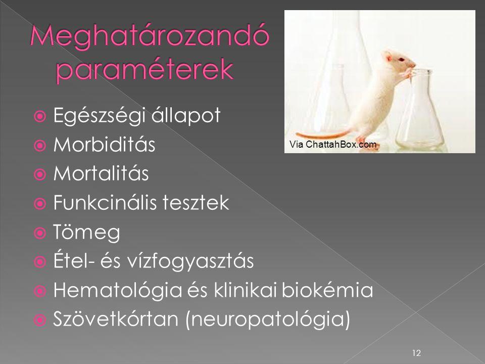  Egészségi állapot  Morbiditás  Mortalitás  Funkcinális tesztek  Tömeg  Étel- és vízfogyasztás  Hematológia és klinikai biokémia  Szövetkórtan