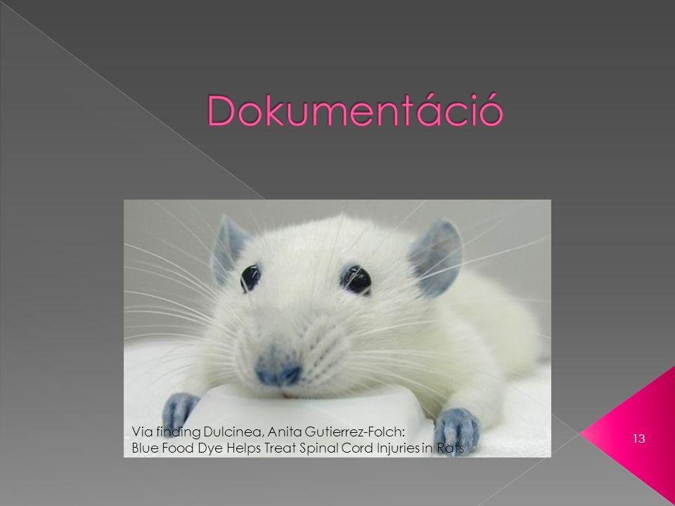 13 Via finding Dulcinea, Anita Gutierrez-Folch: Blue Food Dye Helps Treat Spinal Cord Injuries in Rats