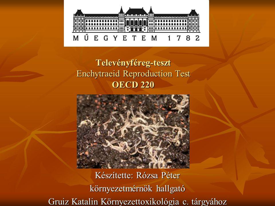 Televényféreg-teszt Enchytraeid Reproduction Test OECD 220 Készítette: Rózsa Péter környezetmérnök hallgató Gruiz Katalin Környezettoxikológia c. tárg