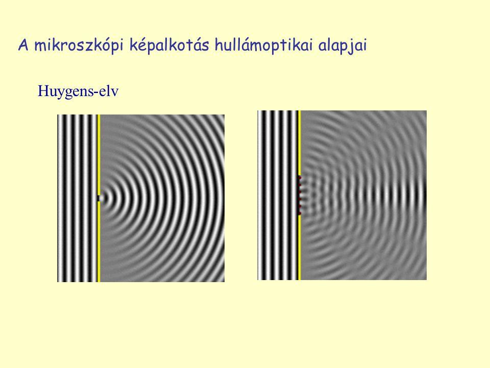 Huygens-elv A mikroszkópi képalkotás hullámoptikai alapjai