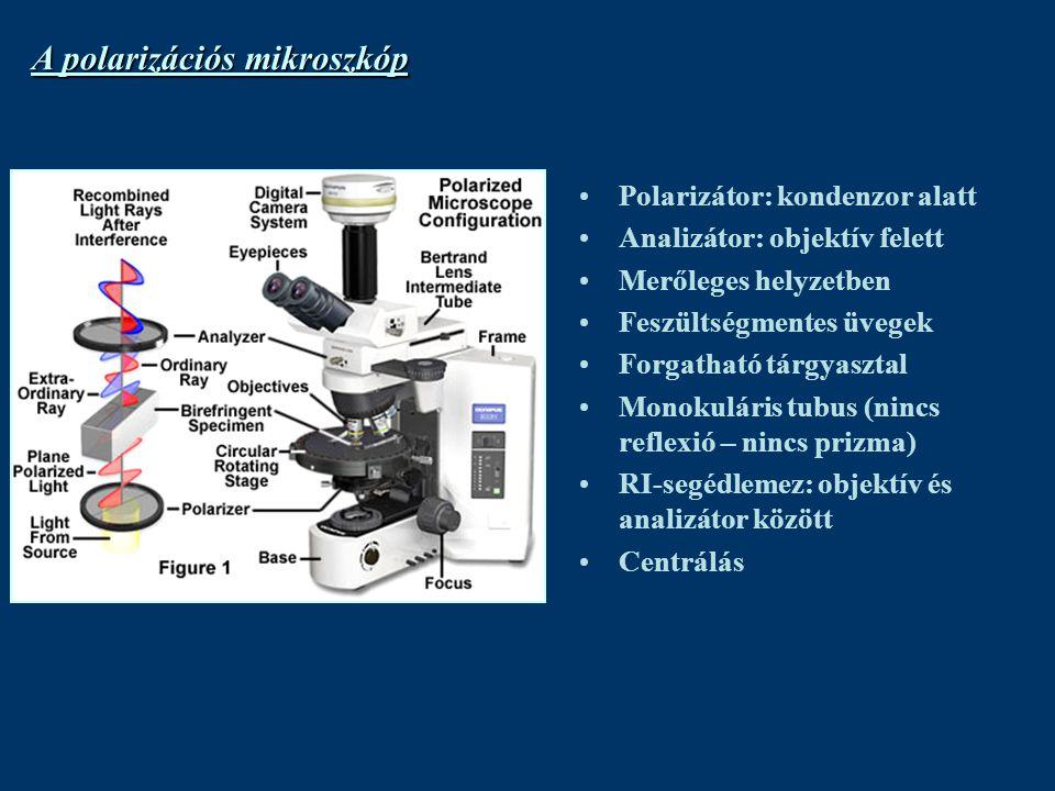 A polarizációs mikroszkóp Polarizátor: kondenzor alatt Analizátor: objektív felett Merőleges helyzetben Feszültségmentes üvegek Forgatható tárgyasztal