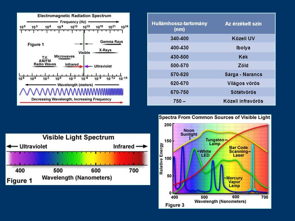Hullámhossz-tartomány (nm) Az érzékelt szín 340-400Közeli UV 400-430Ibolya 430-500Kék 500-570Zöld 570-620Sárga - Narancs 620-670Világos vörös 670-750S